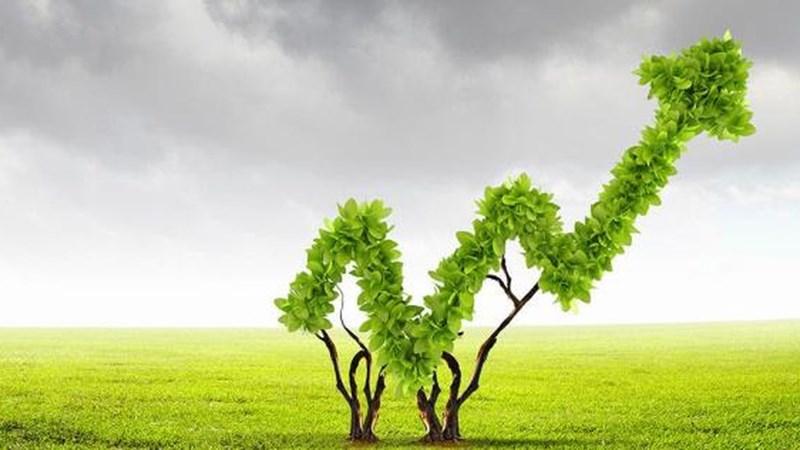 Tiêu chí lựa chọn cổ phiếu theo đầu tư tăng trưởng